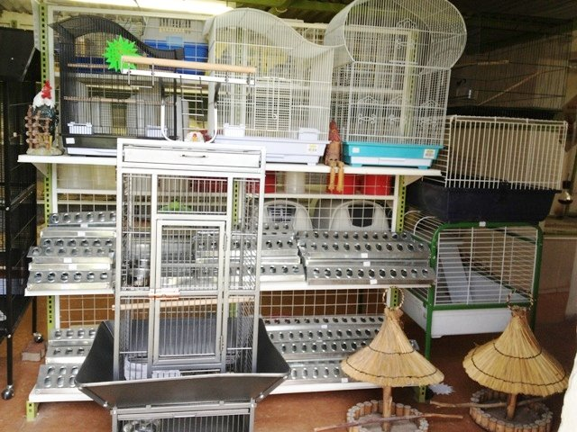 our pet shop stocks a variaty of cages and other accesories. 640x480 2